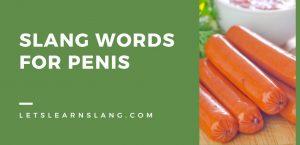 Slang Words for Penis