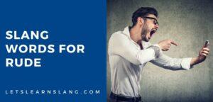 slang words for rude